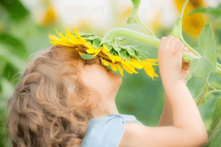 little girl smelling flower